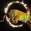 Цирки в Ленинске